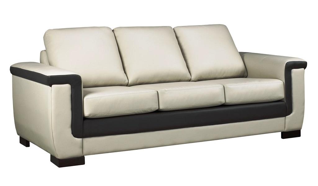 AC6100 Leather Sofa