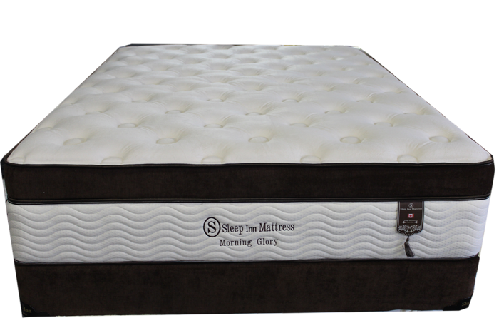 morning glory plush mattress 1