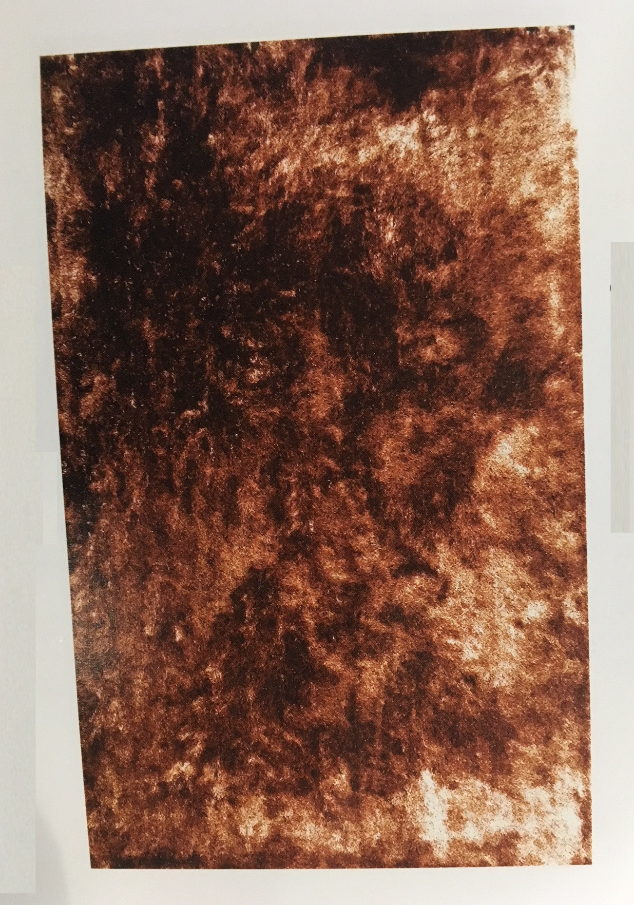 RUGS-MDS-30-505